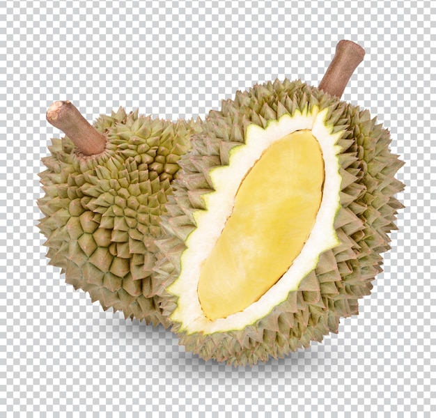 Vers geïsoleerd durian-fruit