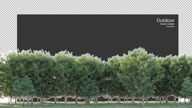 Verscheidenheid aan bomen en gras in 3d-rendering