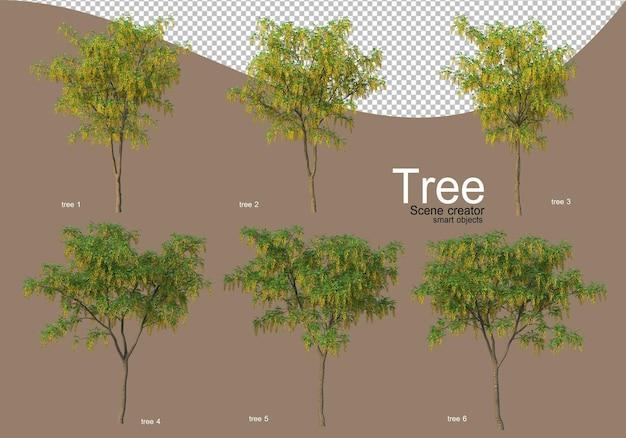 Verschillende soorten bomen voor een prachtig landschap