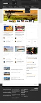 Viewport: magazine website template (psd)