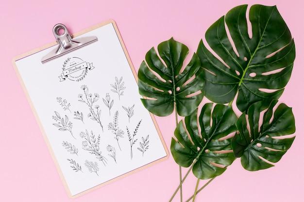 Vista dall'alto del modello di concetto di foglie