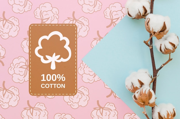 Vista superior de algodón natural con maqueta