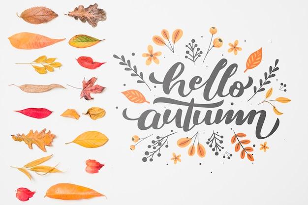 Vista superior decoración con hojas de otoño