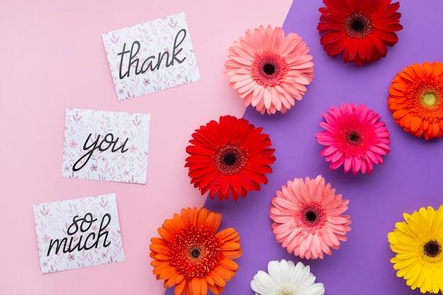 Vista superior de flores y letras sobre fondo rosa y morado