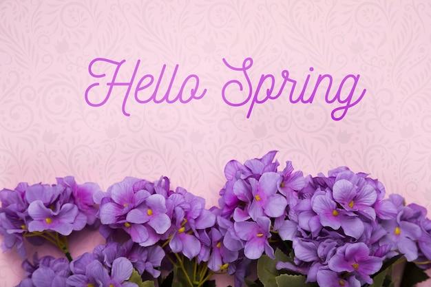 Vista superior de flores de phlox púrpura