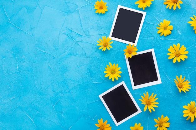 Vista superior de fotografías con manzanilla amarilla y espacio de copia