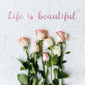 Vista superior hermoso conjunto de concepto de flores