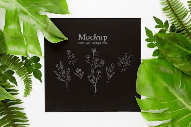 Vista superior de hojas verdes con maqueta.