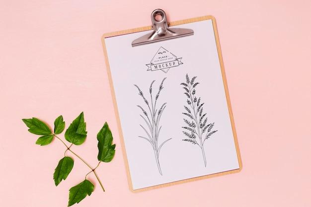 Vista superior de la maqueta del concepto de hojas