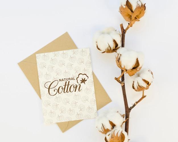 Vista superior rama de algodón con maqueta