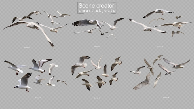 Vliegende vogels instellen scène maker geïsoleerd