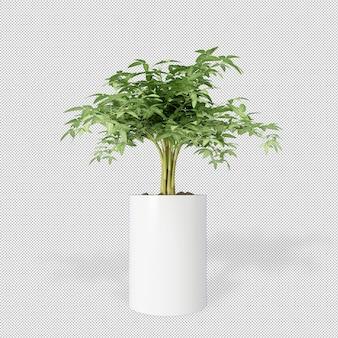 Vooraanzicht van plant in pot in 3d-rendering