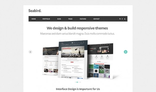 Zeevogel - homepage html5 template psd