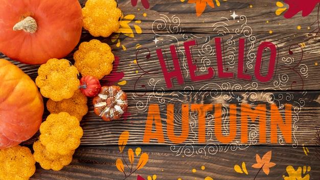 Zucche decorative per vista dall'alto di halloween