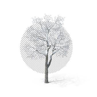 3d, arbre blanc de noël première perspective