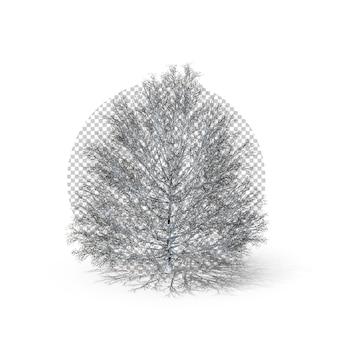 3d neige de noël sur la première perspective de l'arbre