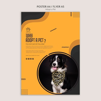 Adoptez un modèle de flyer pour chien border collie pour animaux de compagnie