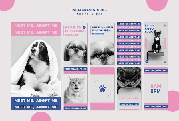 Adoptez un modèle d'histoires instagram de concept d'animal de compagnie