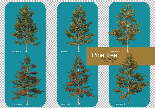 Affichez différents motifs de pins