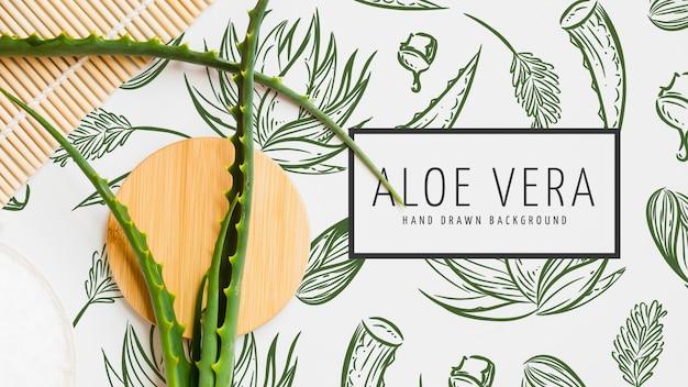 Aloe vera fond dessiné à la main
