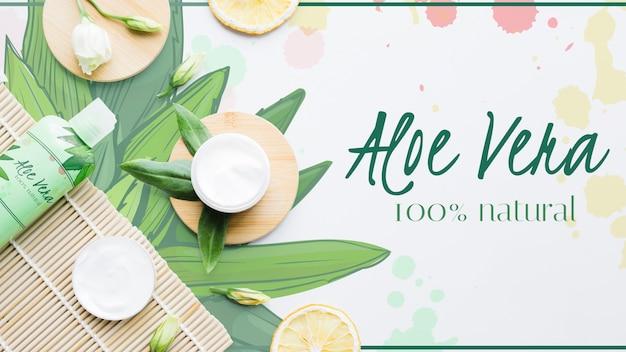 Aloe vera fraîche avec des produits