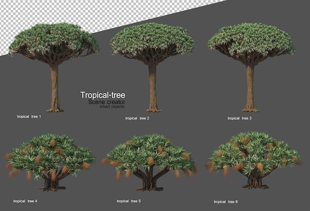 Arbres et plantes tropicales en rendu 3d