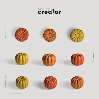 Arrangement de thanksgiving avec des citrouilles colorées