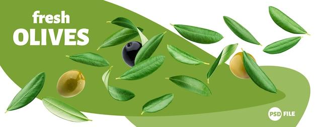 Bannière de feuilles d'olivier tombant