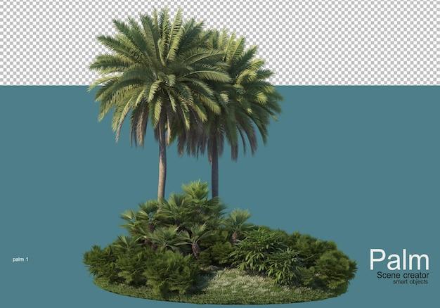 Beau petit rendu de plantation de palmiers