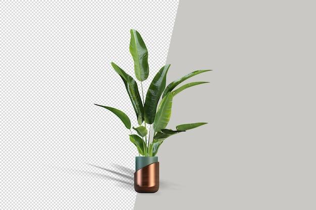 Belle plante en pot en rendu 3d isolé