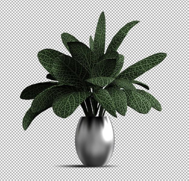 Belle plante réaliste 3d en pot isolé