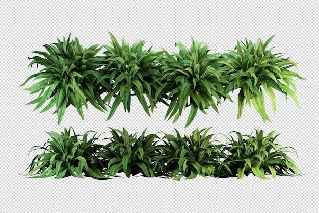 Belles différentes sortes de fleurs en rendu 3d isolé