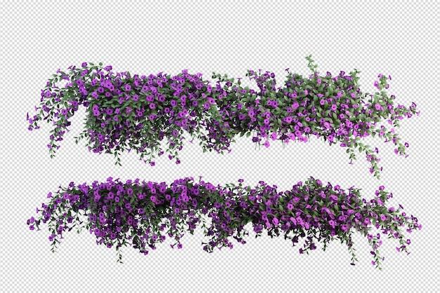 Belles différentes sortes de fleurs