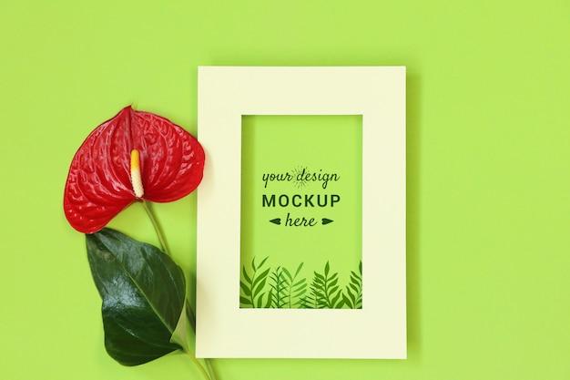 Cadre photo avec une fleur rouge sur fond vert