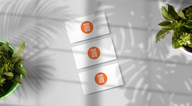 Cartes de visite isolées sur gris clair avec des ombres de feuilles exotiques, vue de dessus
