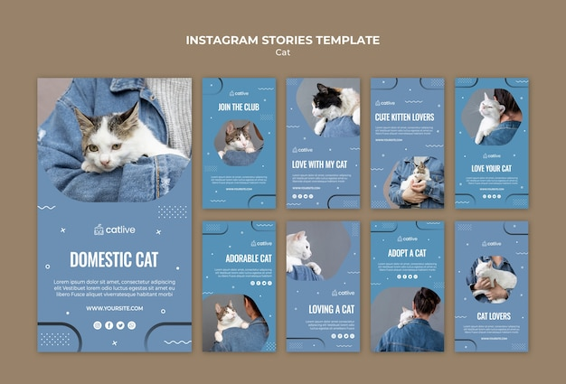 Cat amant concept instagram stories