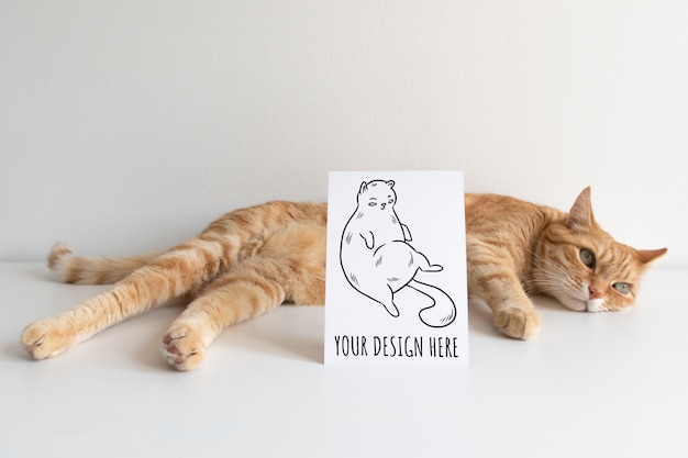 Chat roux avec carte postale