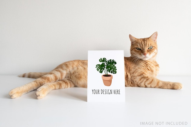 Chat roux avec maquette de carte postale verticale