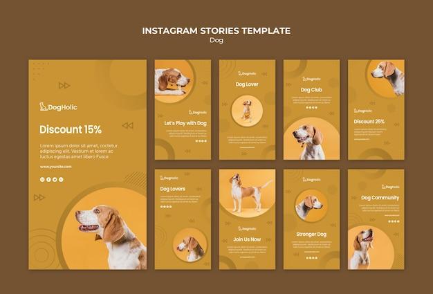 Collection d'histoires de chien instagram