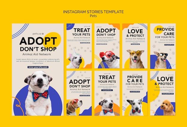 Collection d'histoires instagram pour l'adoption d'un animal de compagnie avec un chien
