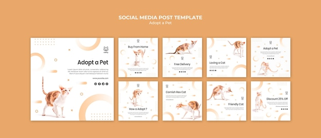 Collection de publications instagram pour l'adoption d'un animal de compagnie