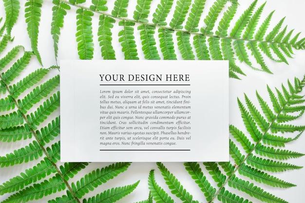 Composition psd modifiable avec une carte vierge blanche sur des feuilles de fougère forestière sur fond blanc.
