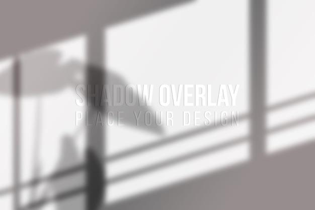 Concept transparent d'effet de superposition de feuilles et d'ombres de fenêtre