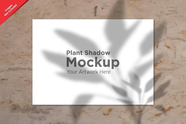 Conception de maquette de feuille d'ombre de plante