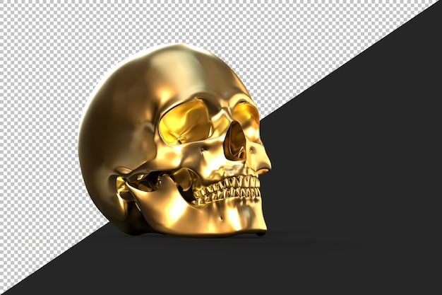 Crâne humain doré brillant