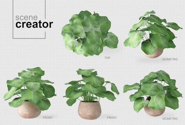 Créateur de scène de plante en pot