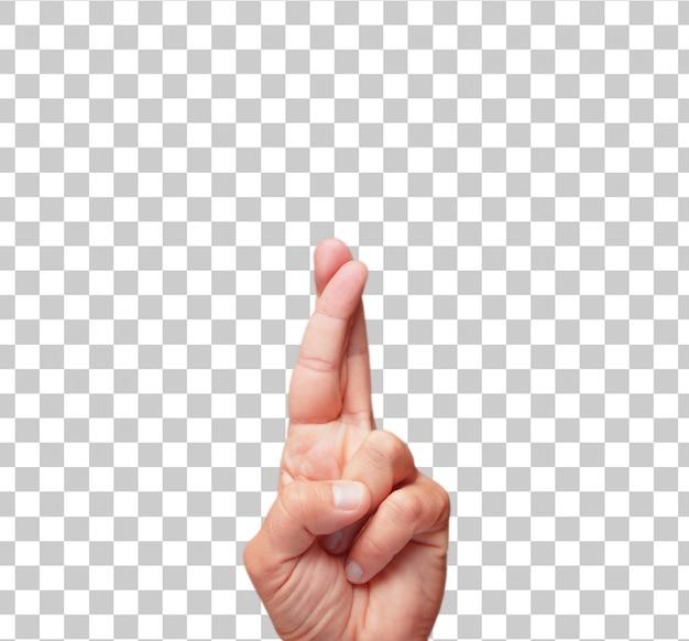 Croisement de doigt mâle isolé