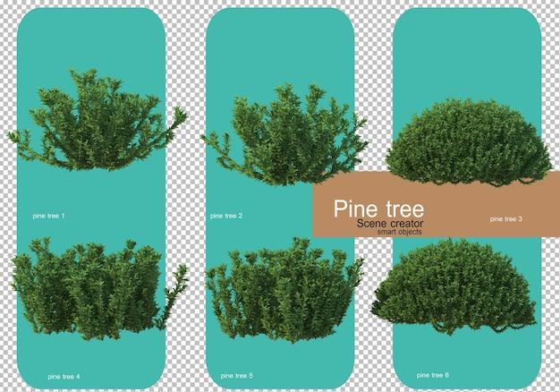 Différentes formes de rendu de pins