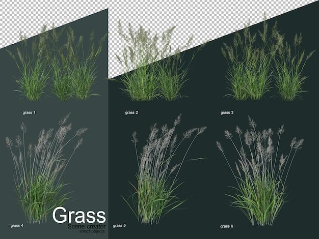 Différents types de rendu 3d d'herbe
