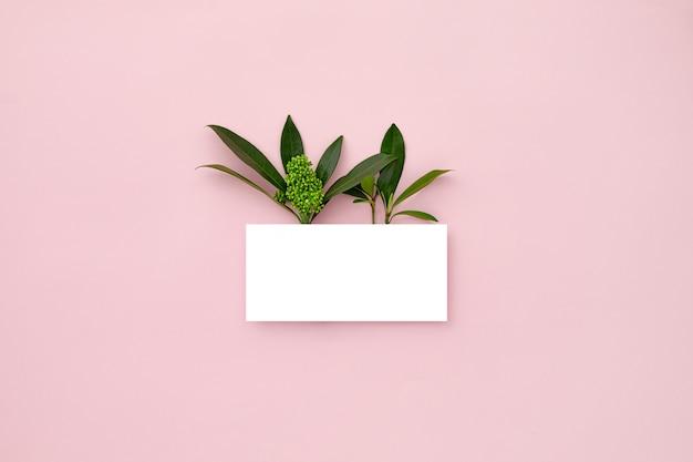 Disposition faite de feuilles vertes et de fleurs d'orchidées